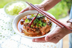 Rice noodles with spicy pork sauce. Thai food Royalty Free Stock Photo