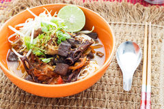 Rice noodles with spicy pork sauce Royalty Free Stock Photos