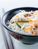 Rice noodles with vegetables, mushrooms and meat Royalty Free Stock Images