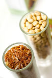 Rice and nut Stock Image