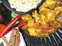 Rice och curry fotografering för bildbyråer