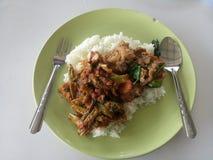 Rice och curry Royaltyfri Fotografi