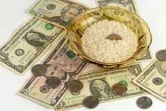 Rice och pengar arkivbild