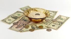 Rice och pengar royaltyfria foton