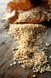 Rice organic grain production Royalty Free Stock Images