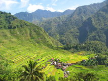 Rice paddies in the north of Luzon Island, Philippines Royalty Free Stock Images