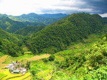 Rice paddies in the north of Luzon Island, Philippines Royalty Free Stock Photos