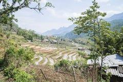 Rice Paddies of Sapa, Vietnam Stock Photos