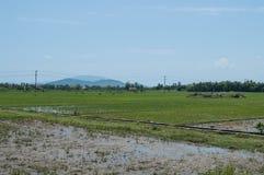 Rice Paddies, Water Buffalos, Village and Cemetery near Nha Tran. G, Vietnam Stock Photo