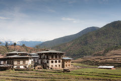 Rice Paddy in the countryside of Bhutan. Rice Field and Bhutanese Style Building in the countryside of Bhutan Royalty Free Stock Photography