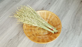 Rice paddy grain. On the woven basket with timber background Stock Photos