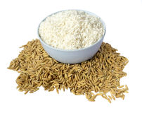 Rice and paddy Royalty Free Stock Images
