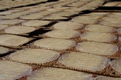 Rice pancakes drying on the sun in the rice noodles factory. Royalty Free Stock Image