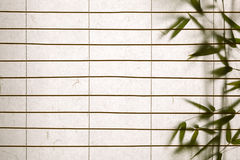 Rice paper background with bamboo leaves. Background ofrice paper  blinds with bamboo leaves Stock Images