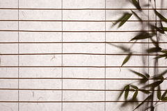 Rice paper background with bamboo leaves. Background ofrice paper  blinds with bamboo leaves Stock Photography