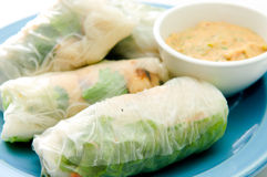 Rice paper chicken and peanut sauce Royalty Free Stock Photos