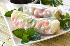 Rice Paper Rolls. Vietnamese rice paper rolls with prawns, served with soy sauce.  Delicious fresh appetizer Stock Image