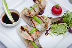 Rice paper rolls. With sauce Stock Images