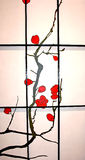 Rice paper screen. Screen with the picture of branch of  sakura  flowering Stock Photos