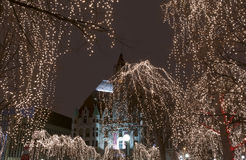 Rice Park Holiday Lights Royalty Free Stock Photos