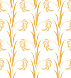 Rice. Pattern Stock Photo