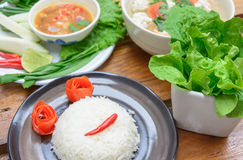 Rice and pepper sauce Royalty Free Stock Images