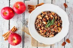 Rice pilaf with apples, nuts and cranberries against white wood. Autumn rice pilaf with apples, nuts and cranberries in a vintage bowl against a white wood Royalty Free Stock Photos