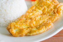 Rice with plain omelet Stock Photography