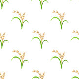Rice plant, vegetarian food seamless pattern. Vector illustratio. Rice plant, vegetarian food seamless pattern. Green harvest, oryza wheat. Vector illustration Stock Photography