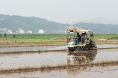 The Rice Planter. Modern rice planting in china Royalty Free Stock Photography