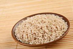 Rice in plate Stock Photography