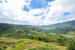 Rice pola na tarasowatym Sapa, Sapa okręg, Lao Cai prowincja, północny zachód Wietnam Obrazy Royalty Free