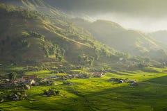 Rice pola na tarasowatym w rainny sezonie przy SAPA, Lao Cai, Wietnam Zdjęcia Stock
