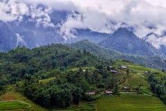 Rice pola w Sapa wiosce, Wietnam Zdjęcie Stock