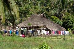 Rice pola z lokalną budą, wieś Donsol, Filipiny Obrazy Stock