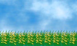 Rice pole pod niebieskie niebo projekta ilustracyjnym tłem royalty ilustracja