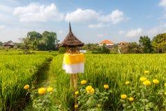 Rice pole z płochą pokrywał strzechą ołtarz dla ofiar Dewi Sri Rice matka krajobrazu wiejskiego bali piękny Indonesia wyspy kuta  zdjęcia stock