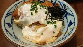 Rice with pork, egg, seaweed. Japanese yummy menu, enjoy eating with it now Stock Photos