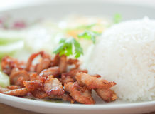 Rice with pork fried with garlic and black pepper Royalty Free Stock Photography