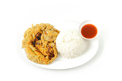 Rice and pork omelet it's popular traditional Thai style food Stock Photography