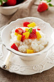 Rice porridge Royalty Free Stock Photo