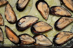 Rice potatoes and mussels Royalty Free Stock Images