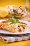 Rice, potatoes and mussels. Stock Images