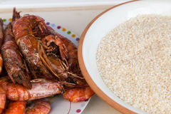 Rice and prawns Royalty Free Stock Photos