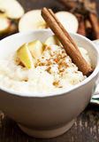 Rice Pudding with Apple and Cinnamon Royalty Free Stock Photos