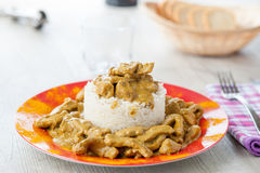 Rice pudding with beef curry Royalty Free Stock Image