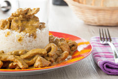Rice pudding with beef curry Royalty Free Stock Images