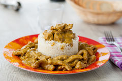 Rice pudding with beef curry. Served in a dish Stock Photos