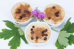 Rice pudding with chocolade decoration Royalty Free Stock Image