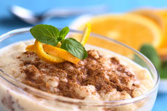 Rice Pudding with Cinnamon Stock Images